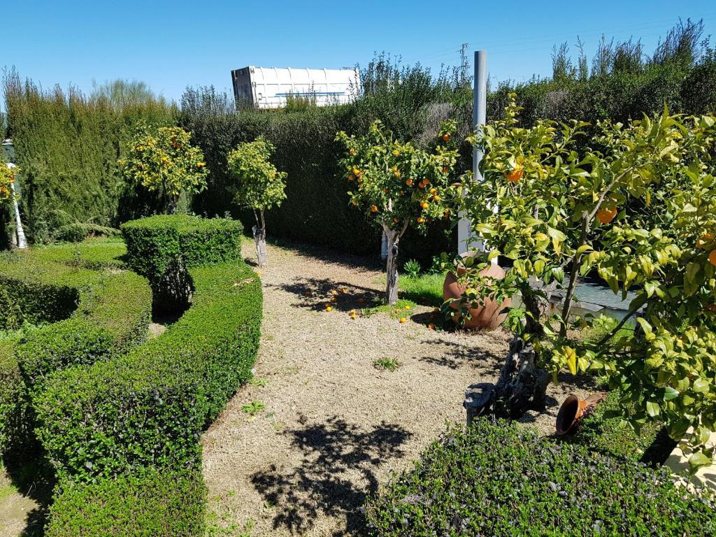 Casa Rural El Limonar (España Campillos) - Booking.com