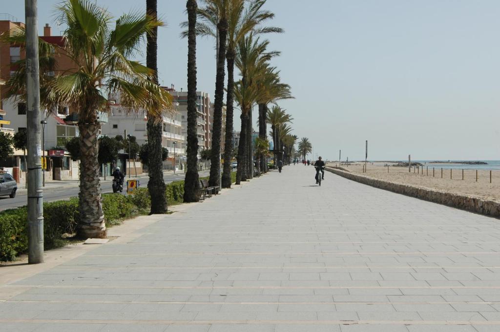 Al Final De La Palmera Calendario.Apartament Palmera Espana Segur De Calafell Booking Com