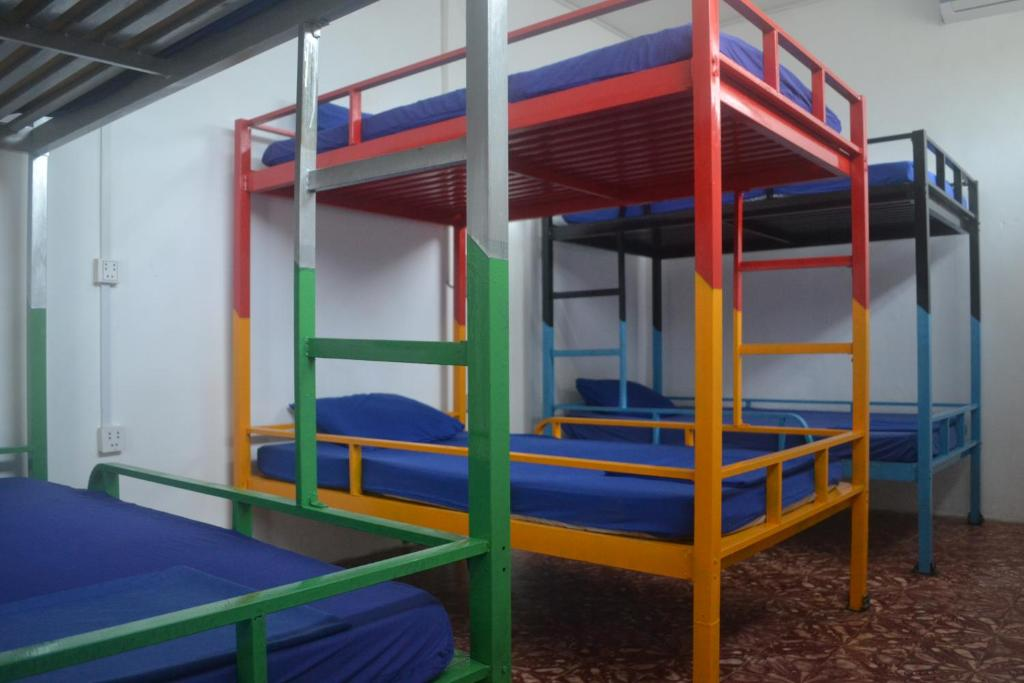A bunk bed or bunk beds in a room at Here Be Dragons