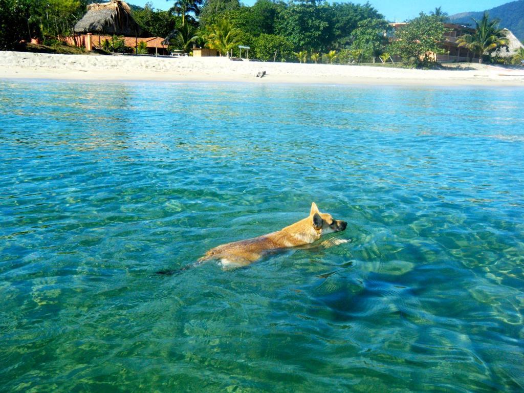 Tranquility Bay Beach Retreat, Trujillo – Precios ...