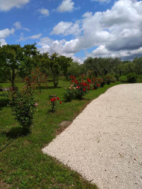 Natural Relax Cecchina.Casa Vacanze Le Rose Ariccia Italy Booking Com