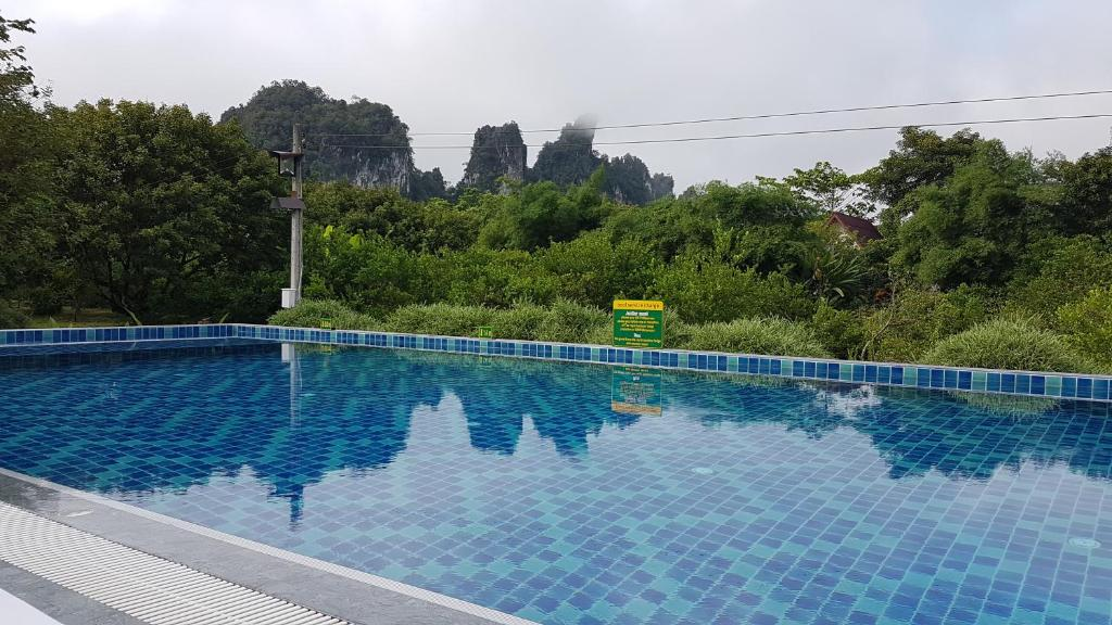The swimming pool at or near Khao Sok Hostel