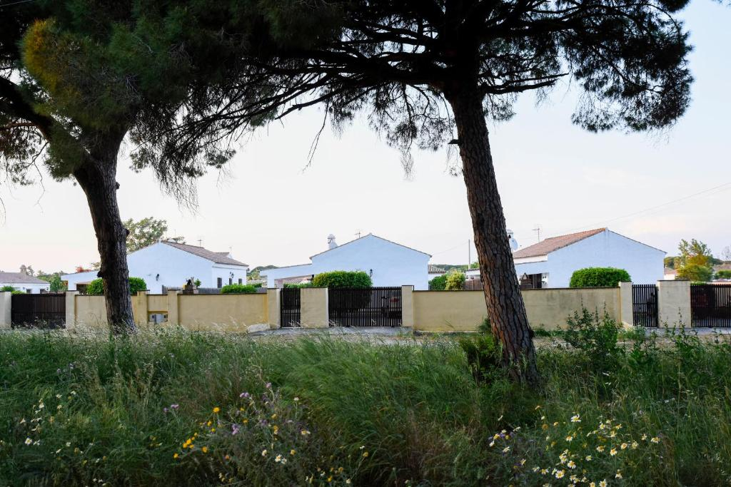 Villas Perez Zara, Conil de la Frontera, Spain - Booking.com