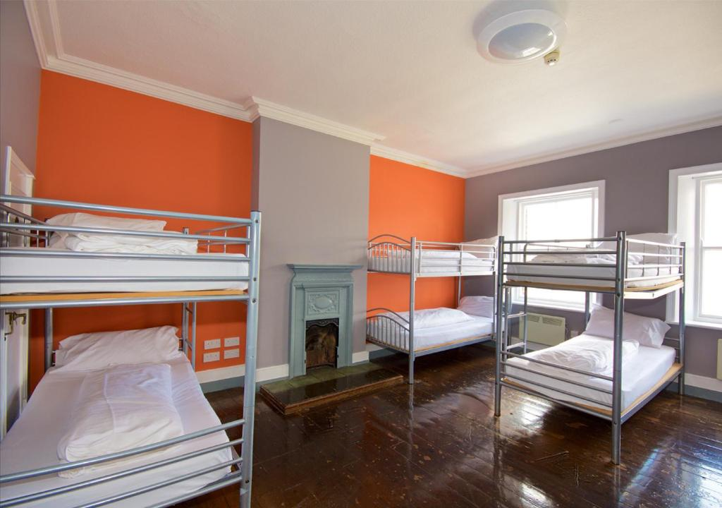 A bunk bed or bunk beds in a room at Albatross Hostel