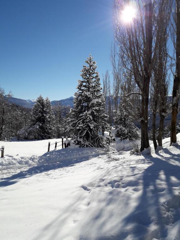 Cabañas Epuyen durante el invierno