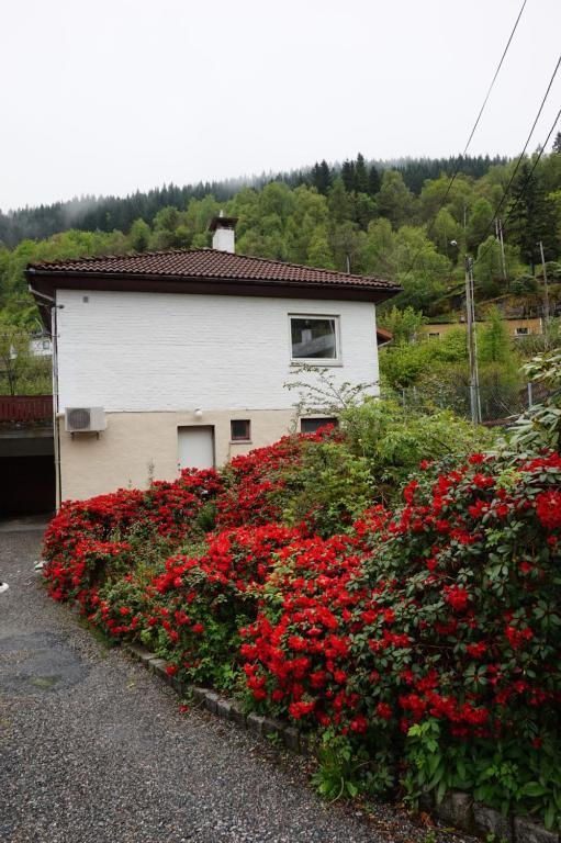Grimen Motell & Camping, Bergen – Precios actualizados 2019