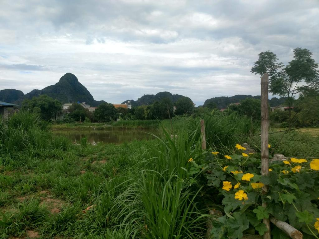 Natural landscape near the homestay