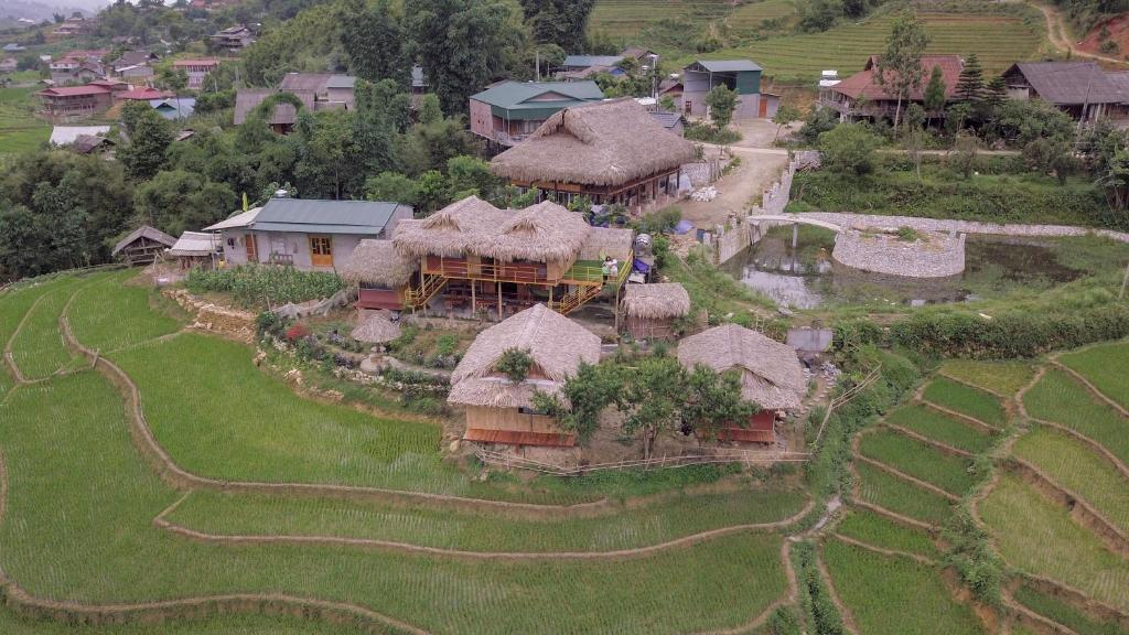 Vue panoramique sur l'établissement Golden Rice Garden