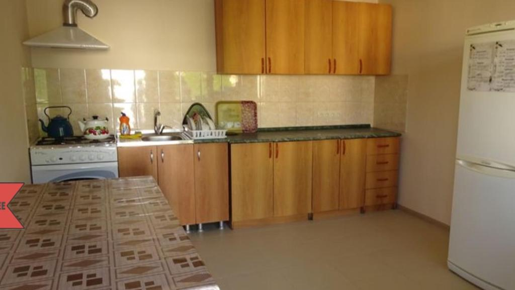 A kitchen or kitchenette at Guest House Belaya Lebed