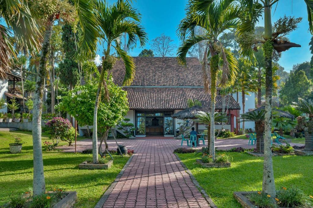 Jardin de l'établissement Silintong Hotel