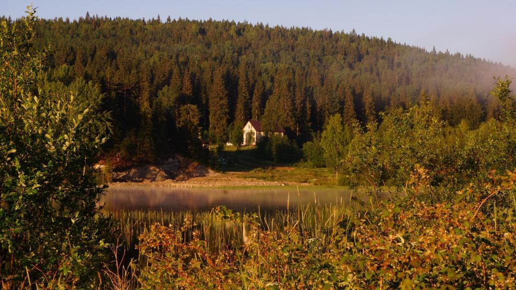 Природа в окрестностях мини-гостиницы