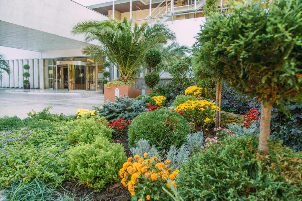 Сад в Гранд Отель «Жемчужина»
