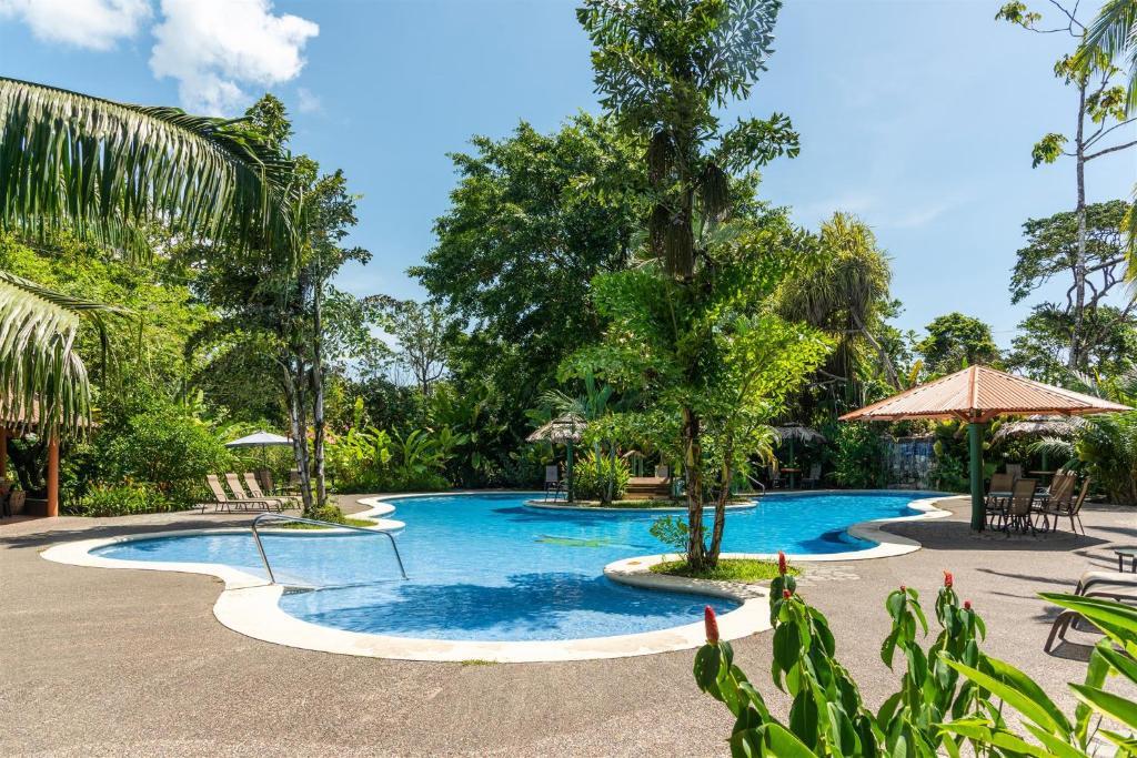 المسبح في Laguna Lodge أو بالجوار