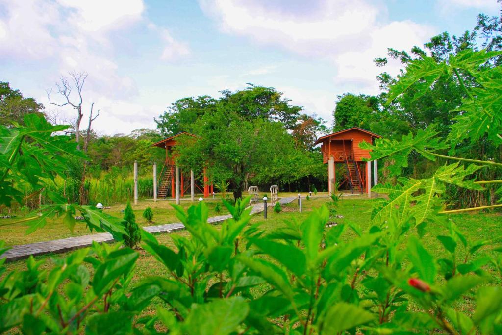Economy Hotels Sigiri Royal Point Tree House Sigiriya Sri
