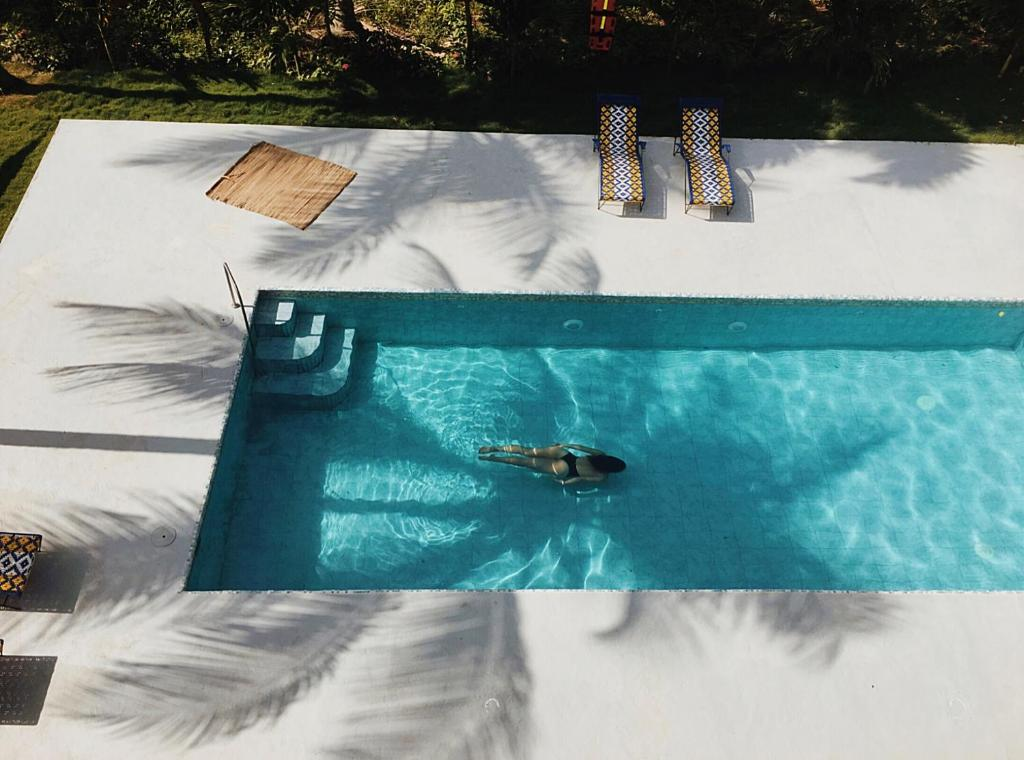 A view of the pool at Casa del Pavo Real Boutique Hostel or nearby