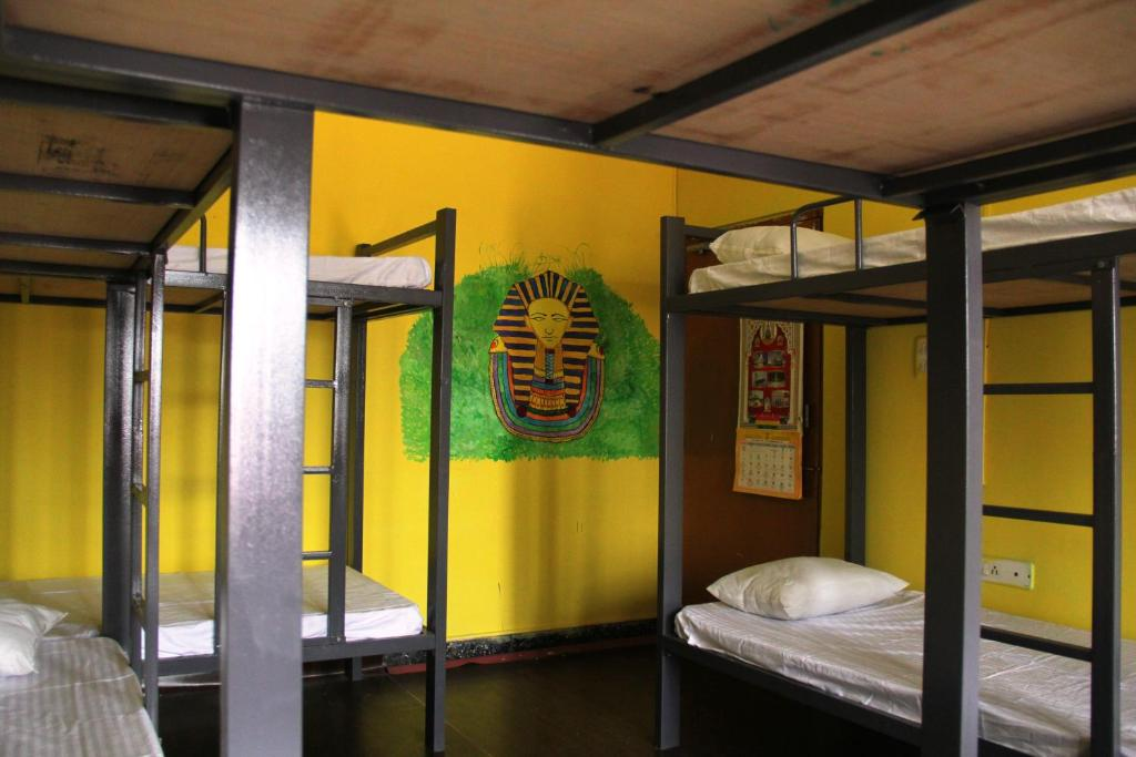 A bunk bed or bunk beds in a room at ELtravo - Hostel Udaipur