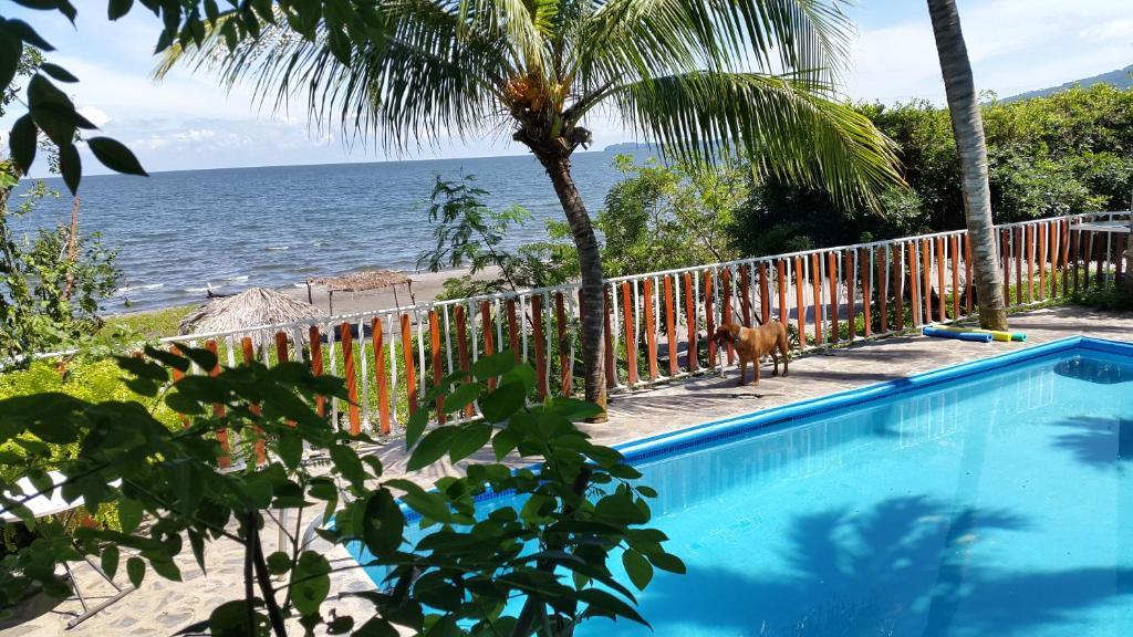 The swimming pool at or near Hotel Villa Paraiso
