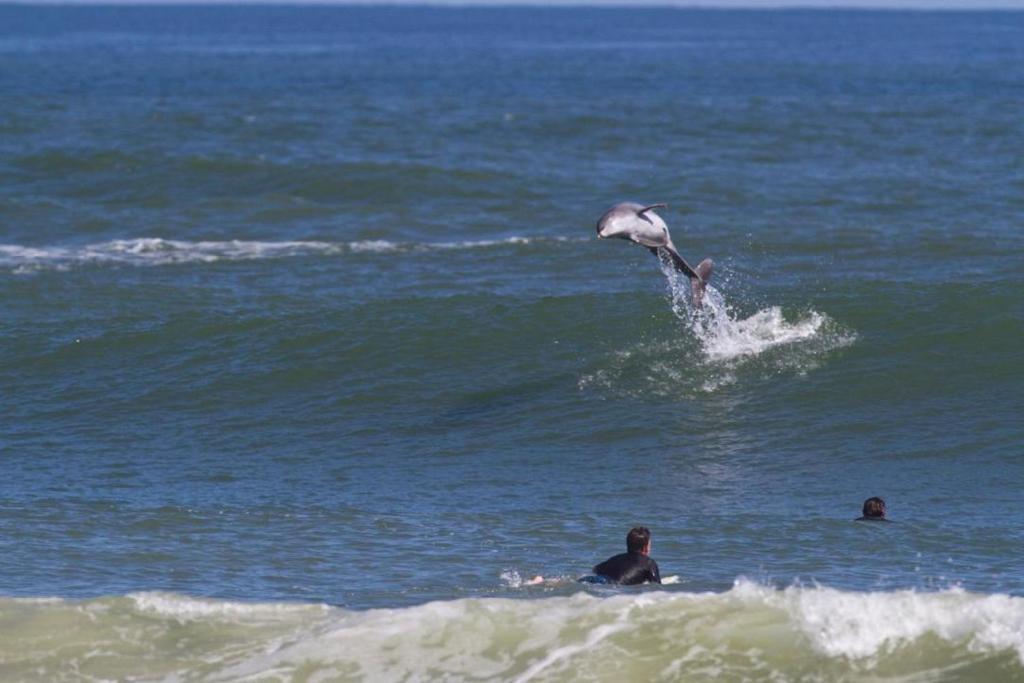 New Symrna Beach >> Nsb Beach Nest 101 New Smyrna Beach Usa Booking Com