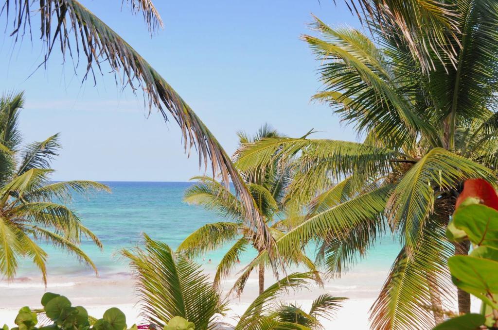 Pláž pri hoteli alebo v blízkosti