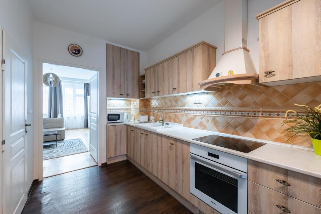 Η κουζίνα ή μικρή κουζίνα στο Falcon Apartment