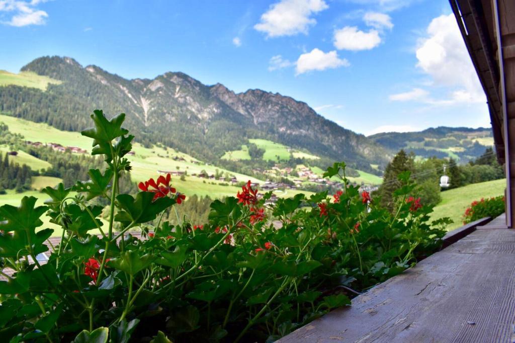 Hotel Zur Post Alpbach, Tirol - Beitrge | Facebook