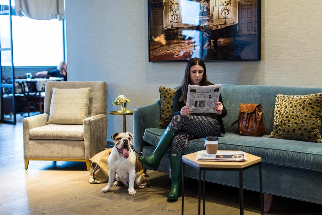Pet or pets staying with guests at Delamar West Hartford