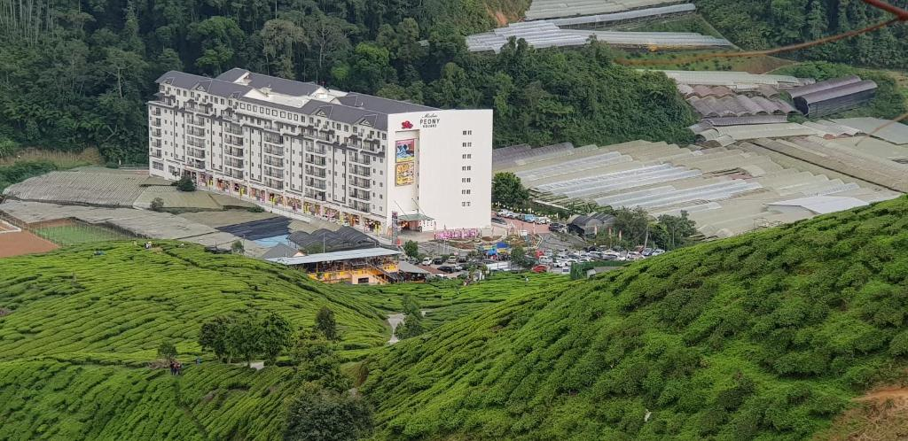 A bird's-eye view of Peony Square Residences