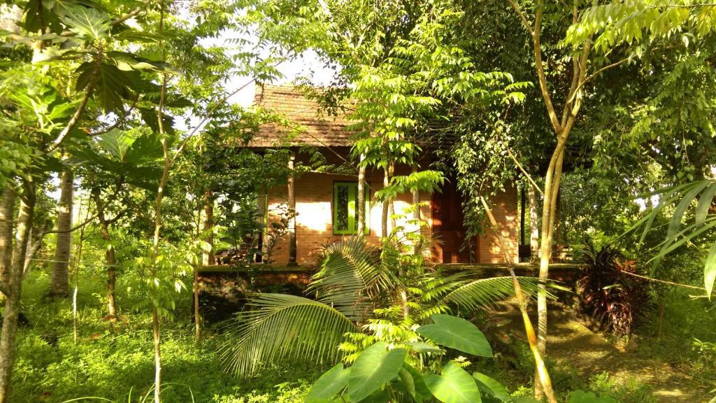 Phòng Tiêu Chuẩn Giường Đôi Nhìn Ra Vườn