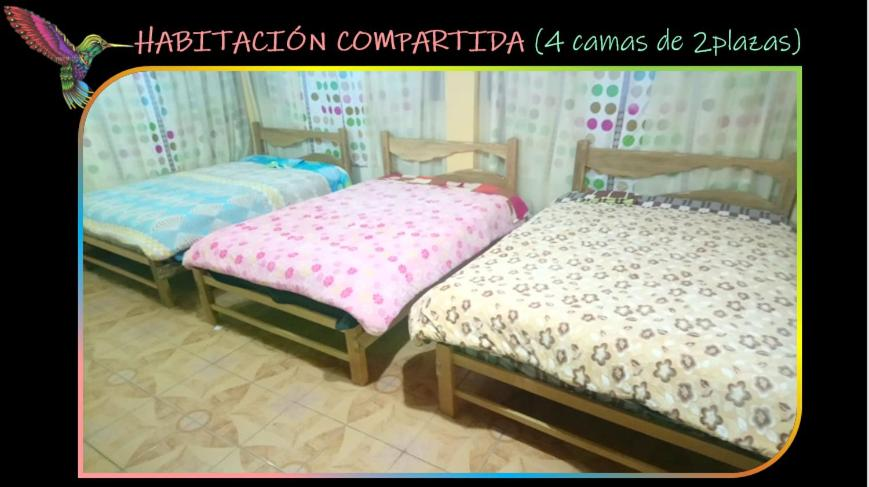 A bed or beds in a room at Sayri Hostel Huancayo