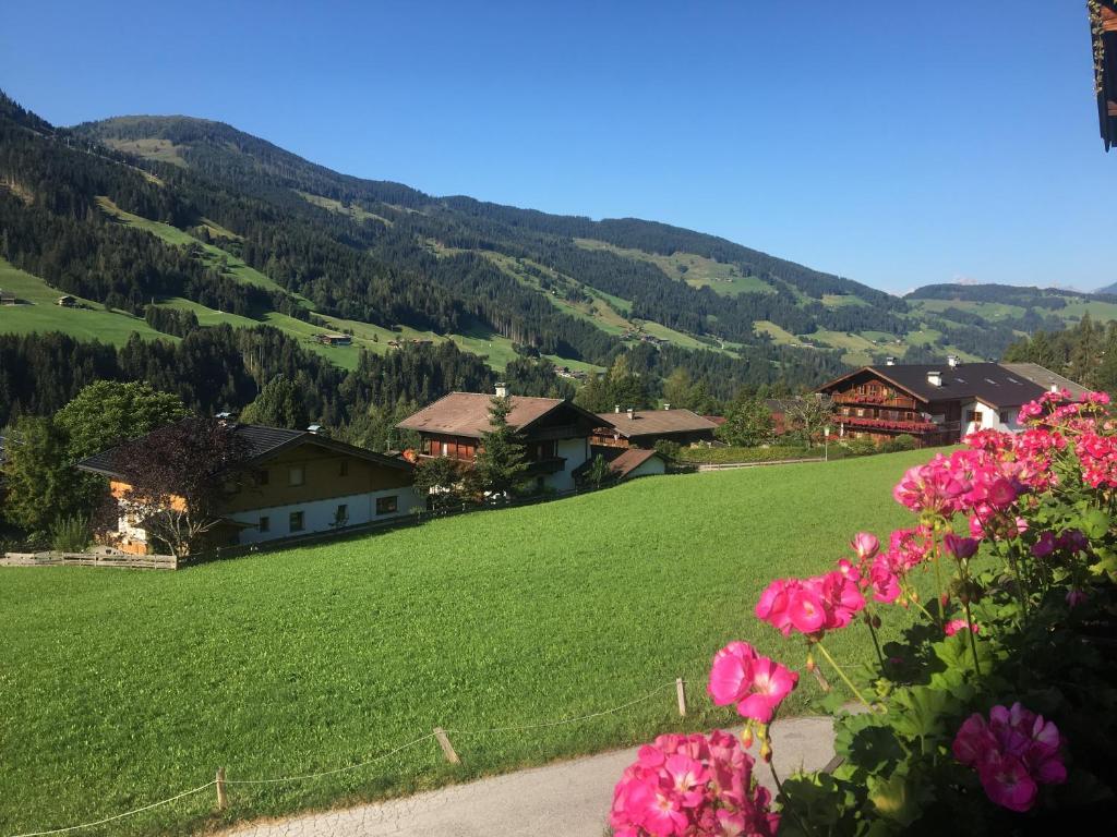Newsletter Alpbachtal in Tirol
