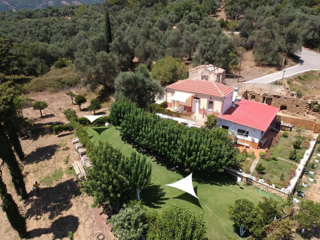 Pohľad z vtáčej perspektívy na ubytovanie Guesthouse Dramoundana
