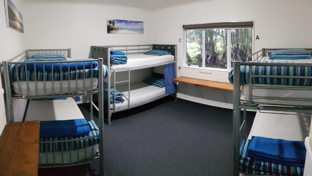 A bunk bed or bunk beds in a room at Happy Apple Backpackers