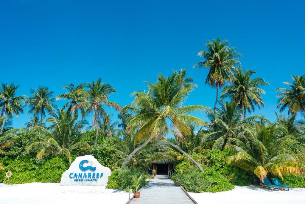 Canareef Resort Maldives Meedhoo Opdaterede Priser For 2020