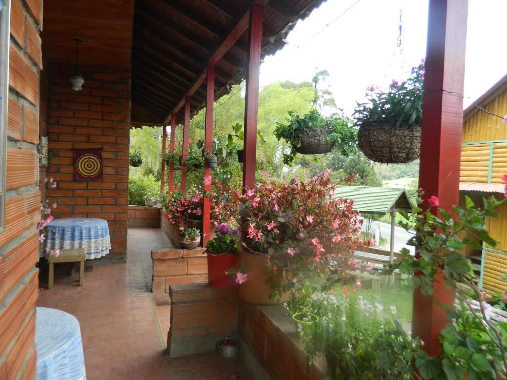 Finca Hotel Nutabes, San Pedro – Precios actualizados 2019
