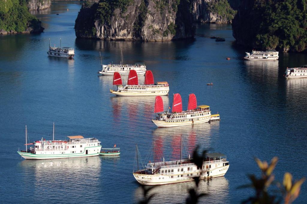Ha Long Sails