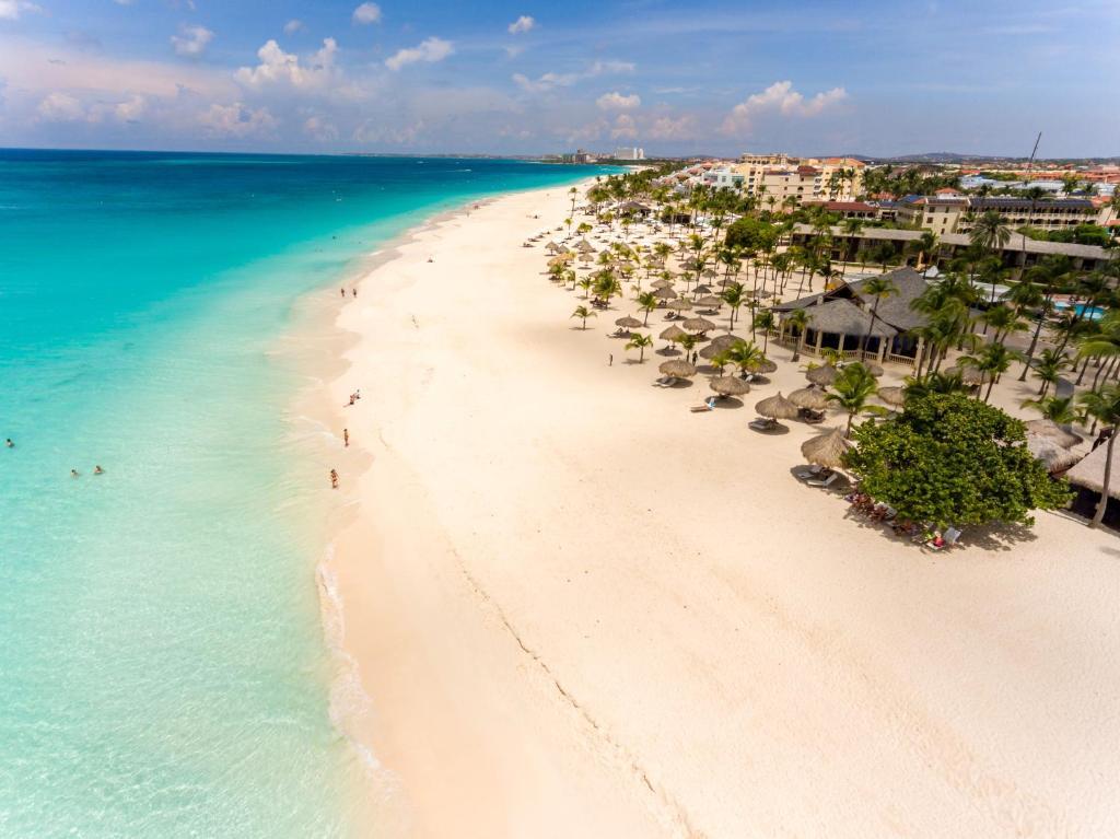 Manchebo Beach Resort Eagle Aruba Booking