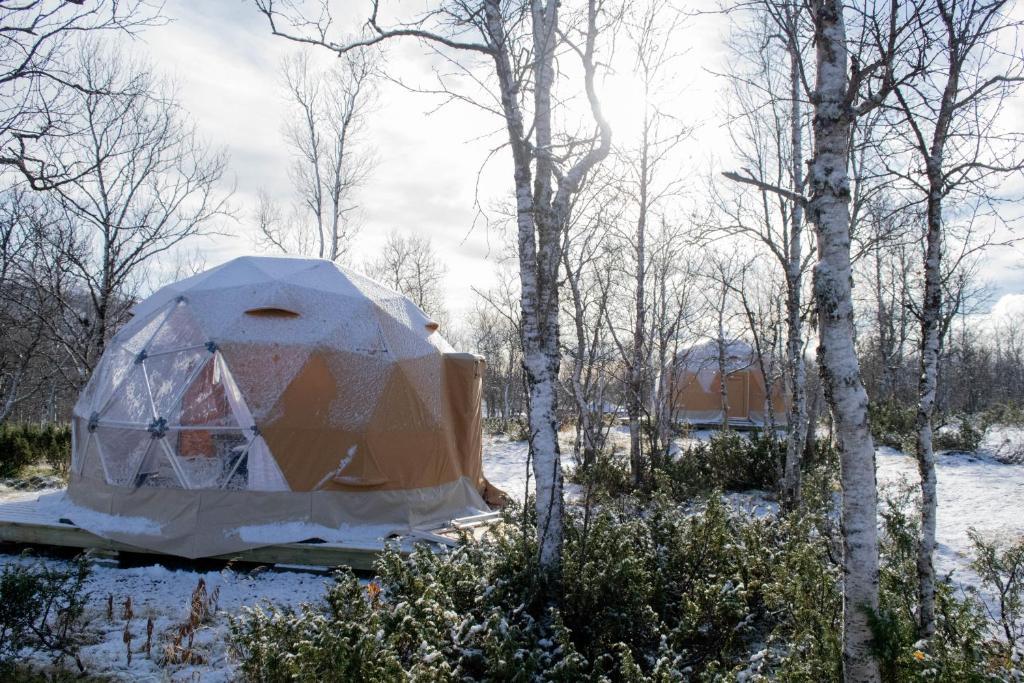 Lodge Aurora Yurt Ruotsi Kiiruna Booking Com