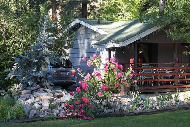 Gopher Cabin