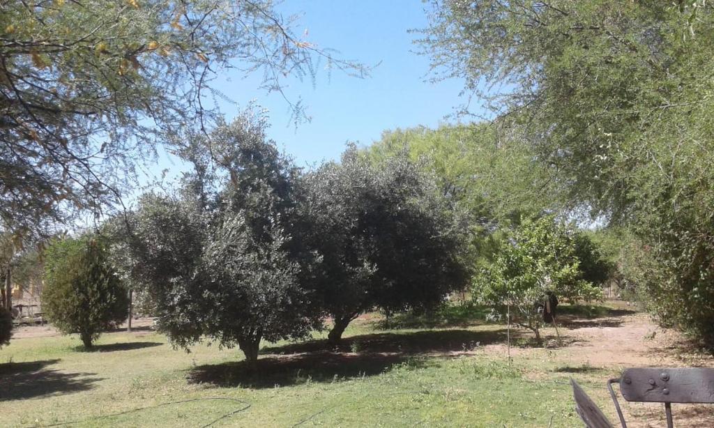 Casa de campo Patio de Campo (Argentina La Rioja) - Booking.com
