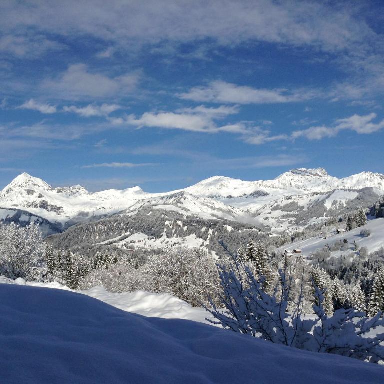 Chalets Savoie