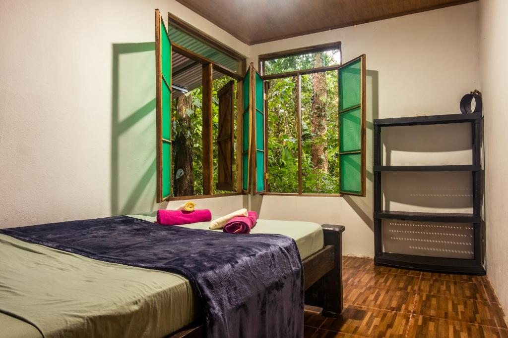 A bunk bed or bunk beds in a room at The Green Jungle Cabinas - Playa Chiquita