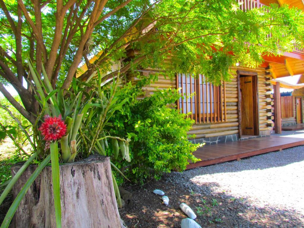 A garden outside Cabañas Esencias Mocona