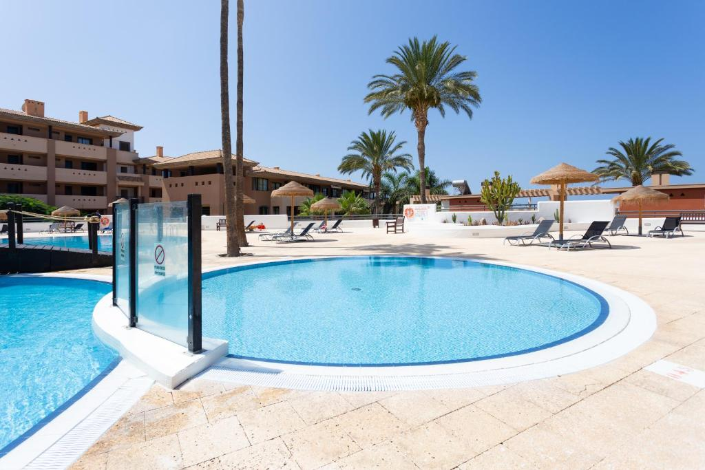 Apartamento con Piscina y WiFi en (Spanje Adeje) - Booking ...