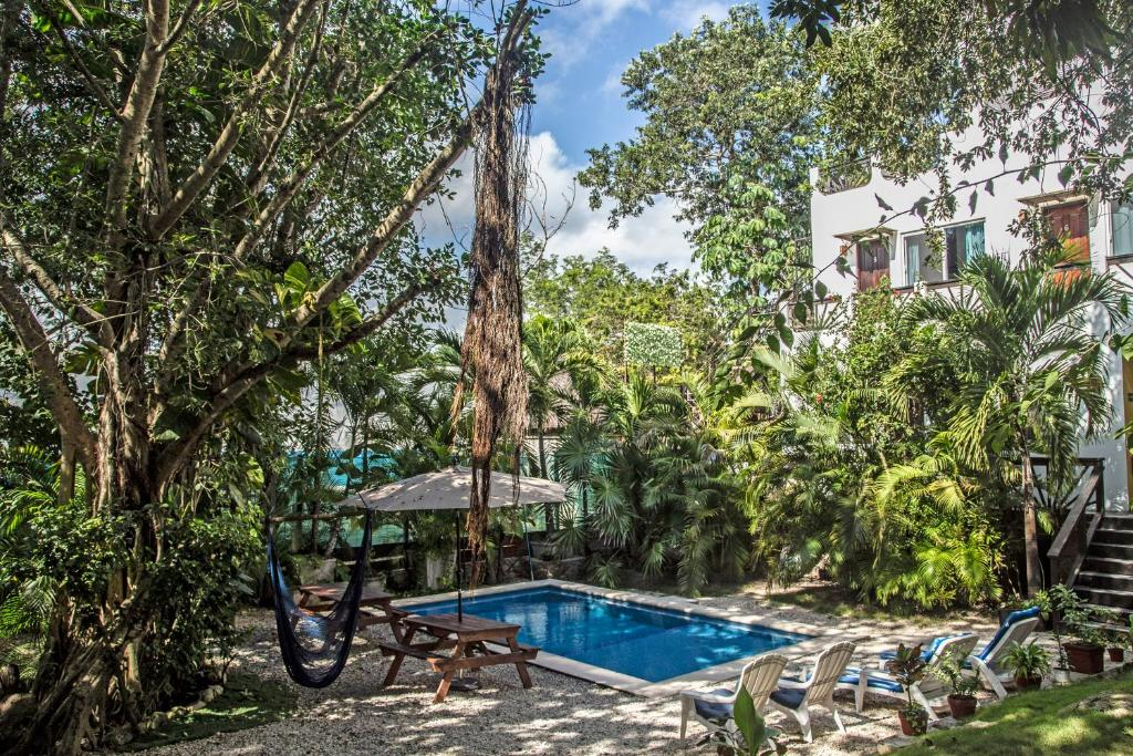 The swimming pool at or near Mango Tulum Hotel
