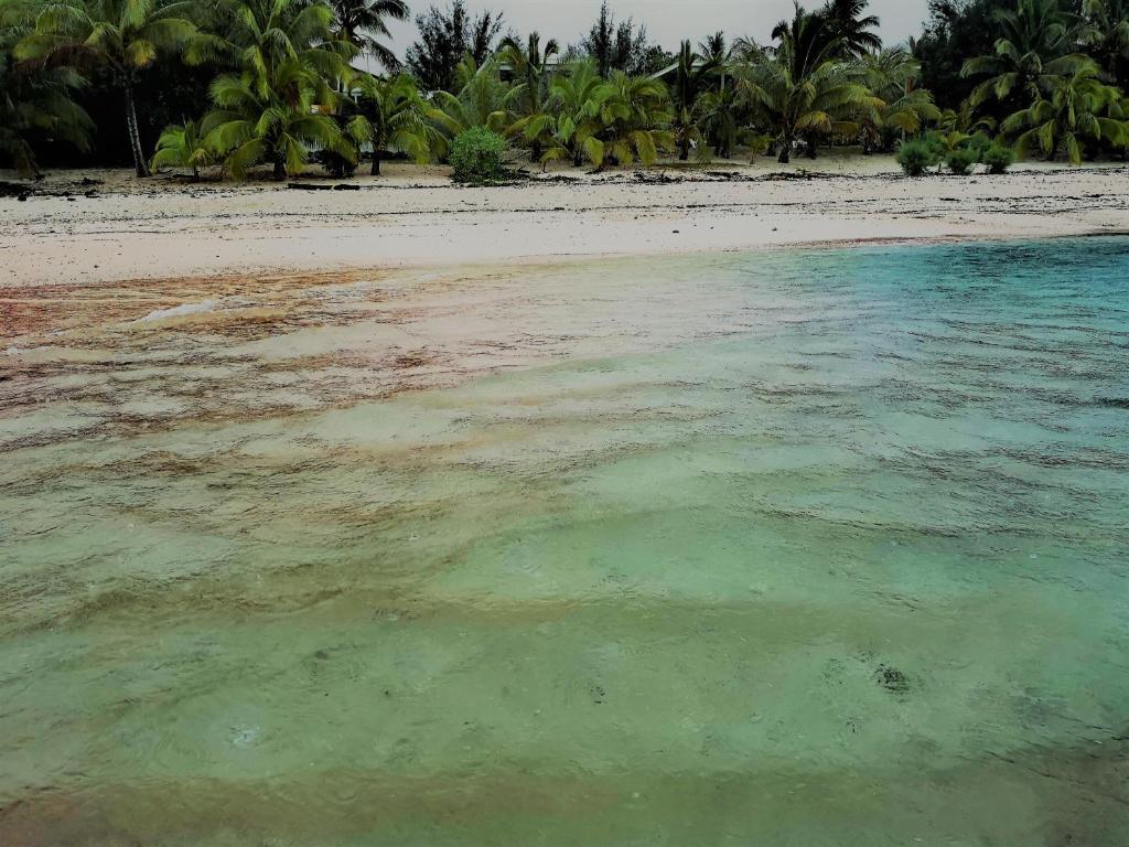 Natura Nikao Beach Bungalow Arorangi Cook Islands