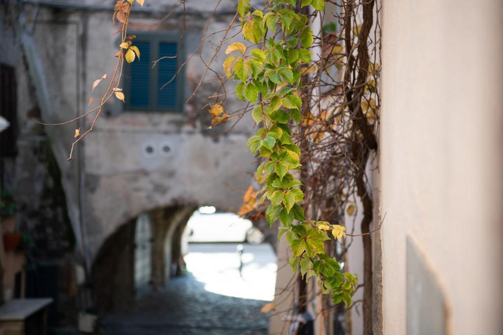 Borgo Vistalago