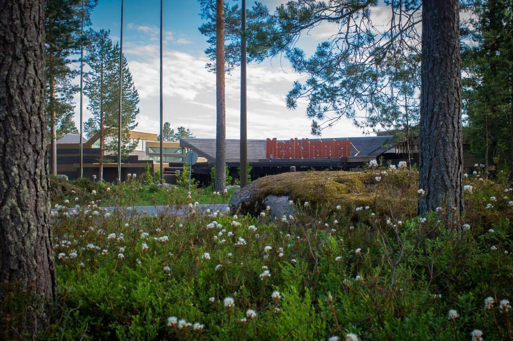 Hotel Mesikammen Ahtari Paivitetyt Vuoden 2020 Hinnat