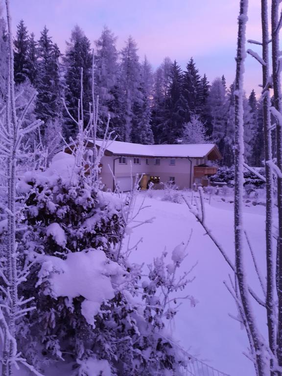 Appartement Haus Petra im Winter