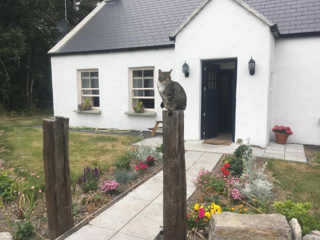 Distance Calculator - How far is it from Mullingar Ireland