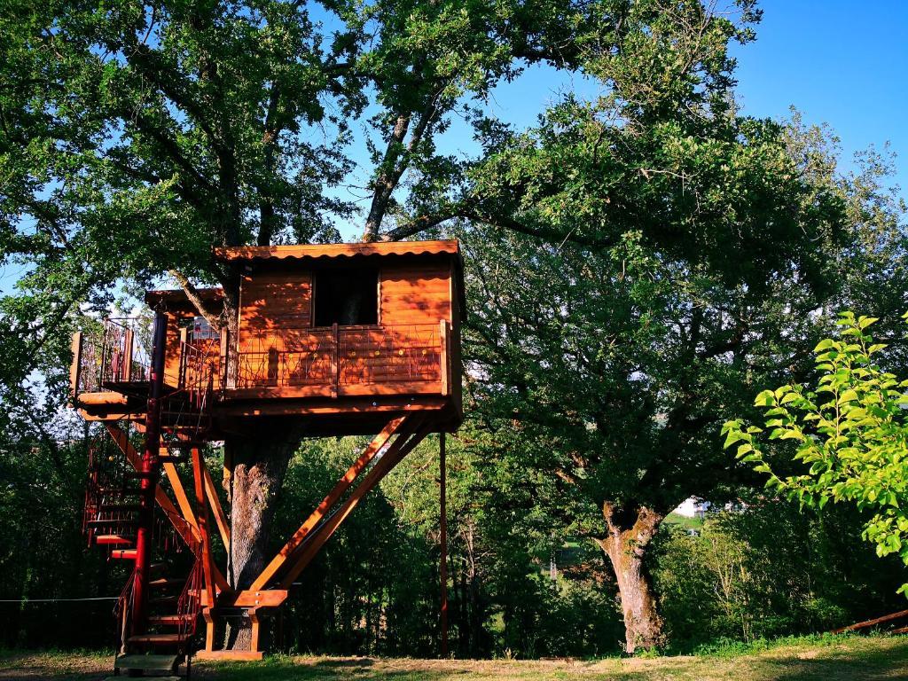 Casa sull\'albero Bocchineri, Rogliano – Prezzi aggiornati ...